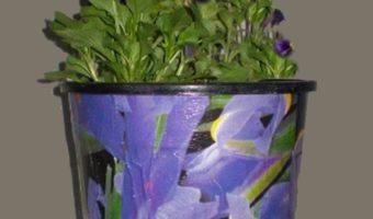 Decoupage Plastic Pots