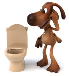 dog looking at toilet